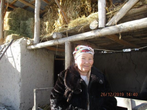 photo of Gulsun
