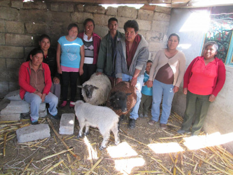 photo of Grupo Flores Choteje Group