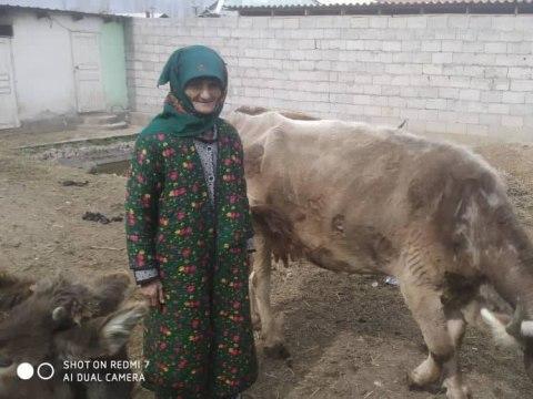 photo of Ashurbi