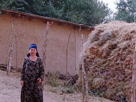 photo of Sairambi