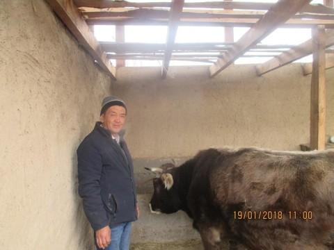 photo of Baktybek