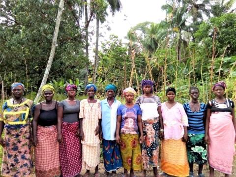 photo of Fatmata T's Female Farmers Group