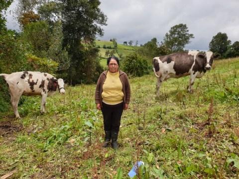 photo of Rosa Amada