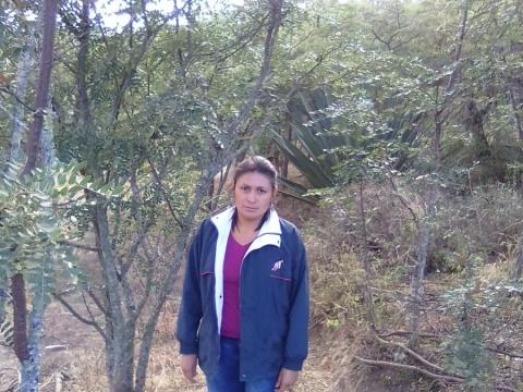 photo of Mily Anali