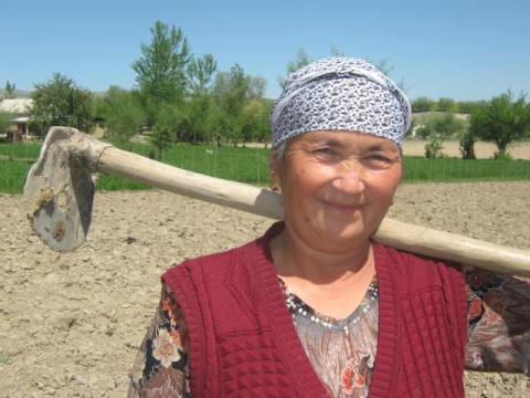 photo of Paizbubu