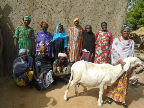 photo of Jiguissèmè Group