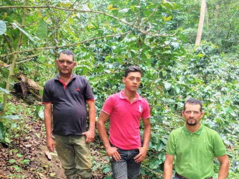 photo of Los Verdes De Maquengales Group