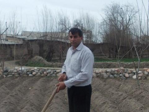photo of Bozor