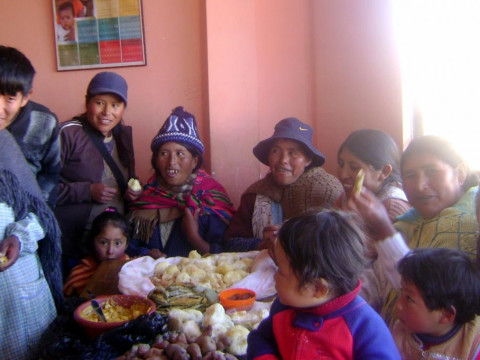 photo of Lirios De Rosas Pampa Group