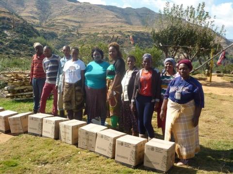 photo of Maphiri Group