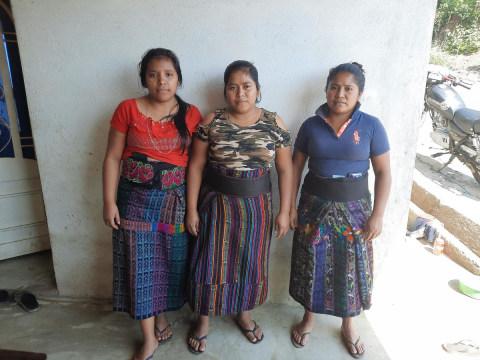 photo of Grupo Las Abejas Group