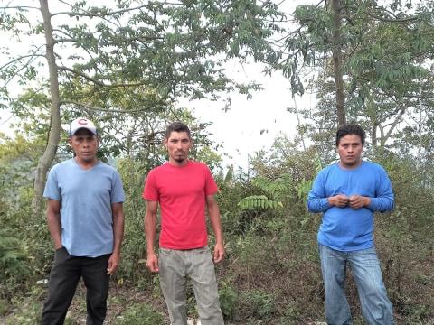photo of Valle De Bendición Teosintal Group