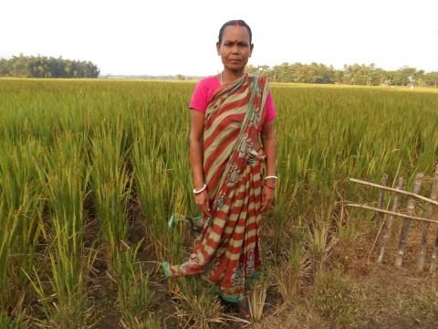 photo of Sushila