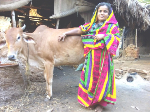 photo of Chhapila