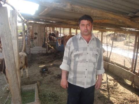 photo of Mushviq