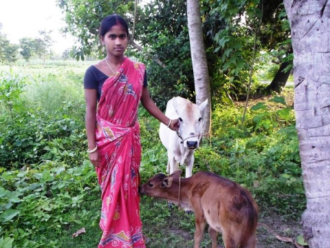 photo of Lakhi