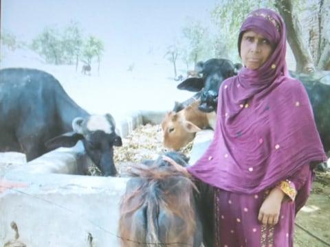 photo of Mussarat