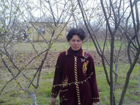 photo of Purza