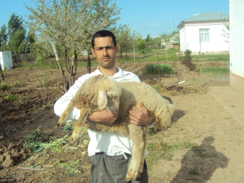 photo of Bahruz