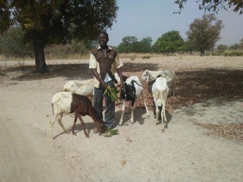 photo of Mahamadi Amini