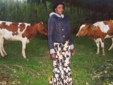 photo of Shalyline