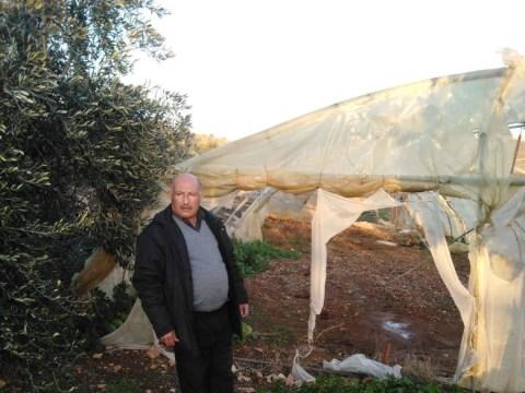 photo of Saleh