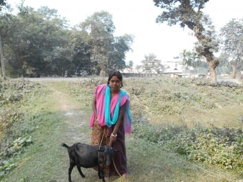 photo of Swapna