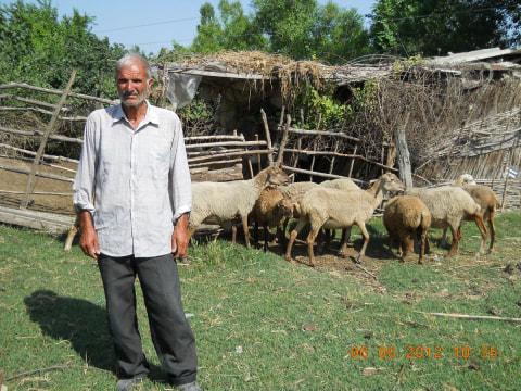 photo of Nazim