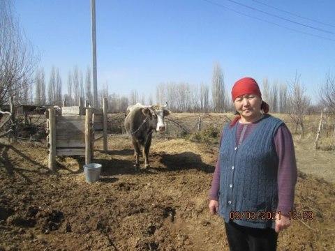photo of Dzhibek