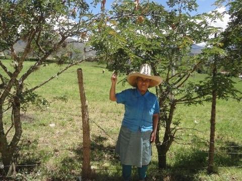 photo of María Francisca
