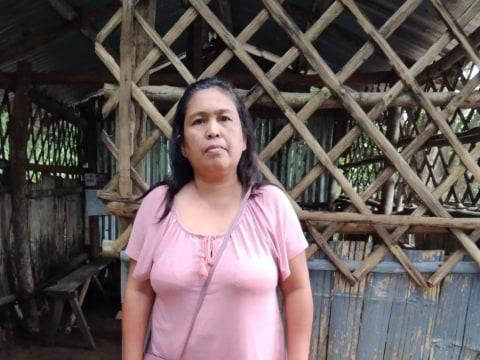 photo of Pelita