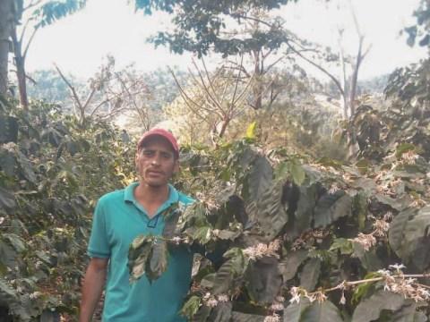 photo of Franklin Ramon