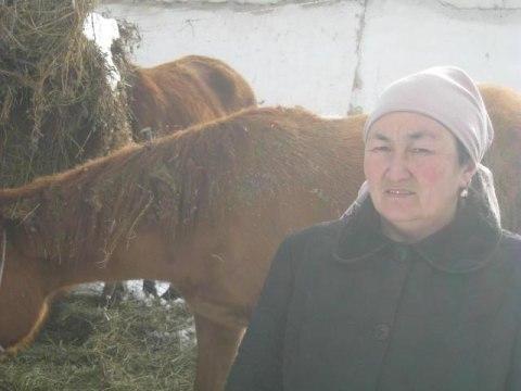 photo of Gulkaiyr