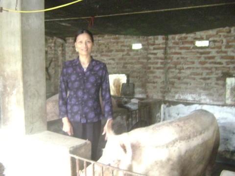 photo of Hoang Thi