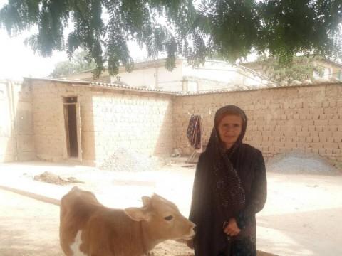 photo of Bibihochar