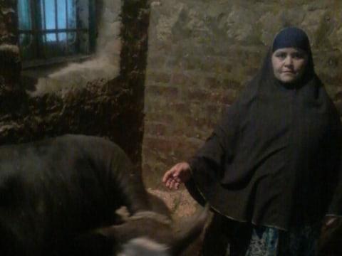 photo of Rasm