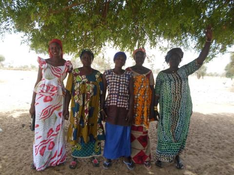 photo of Diouma Ngor's Group
