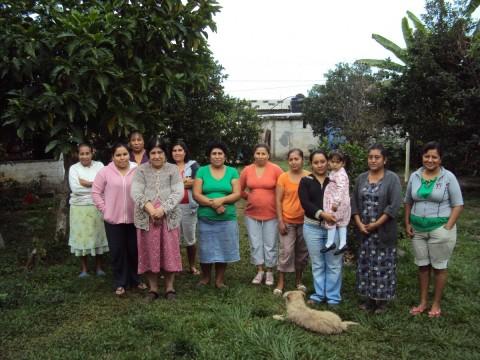 photo of El Cedro Group