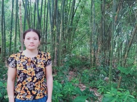 photo of Phấn