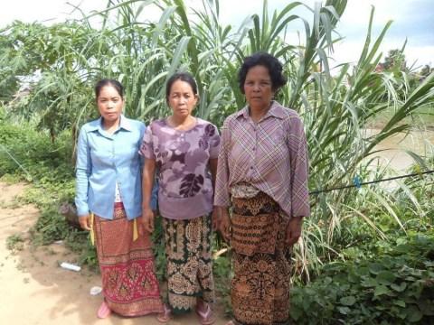 photo of Phal's Group