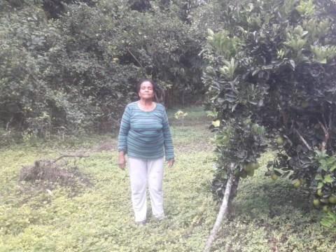 photo of Cruz Elena