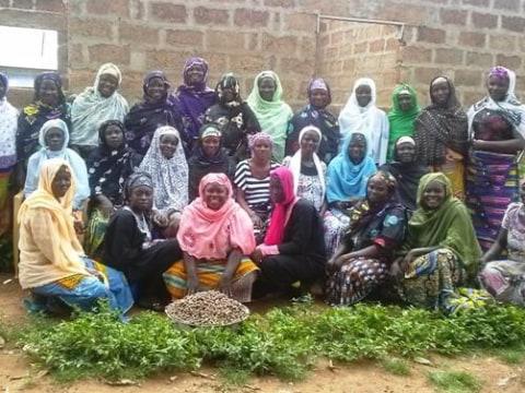 photo of Tungteeya - Kunkuna Group
