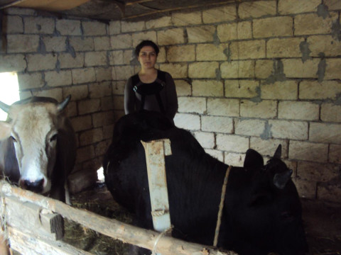 photo of Aynur