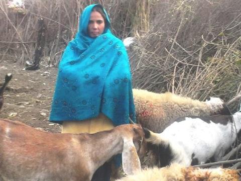 photo of Sakina