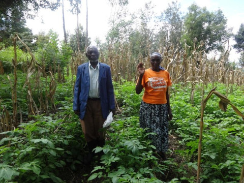photo of Mugwathi Poultry Farmers Self Help Group