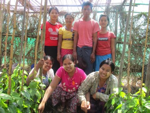 photo of Aye's Group