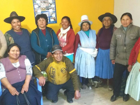 photo of Flor De Anis De Ocongate Group