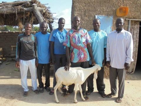 photo of Jigiya Group