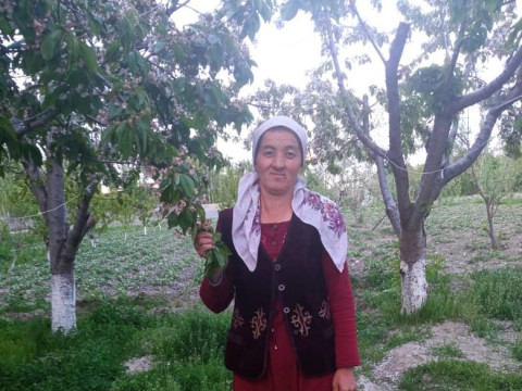 photo of Sanobar