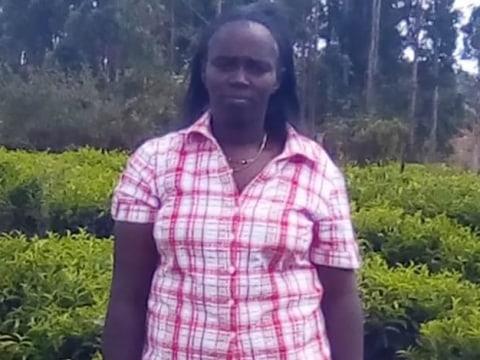 photo of Stellah